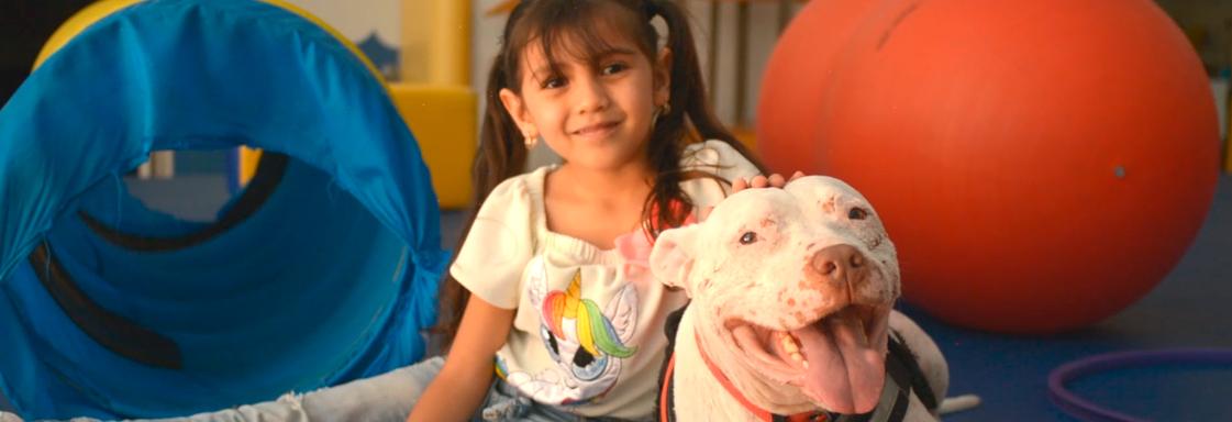 Imagen de portada para nota sobre perritos de asistencia