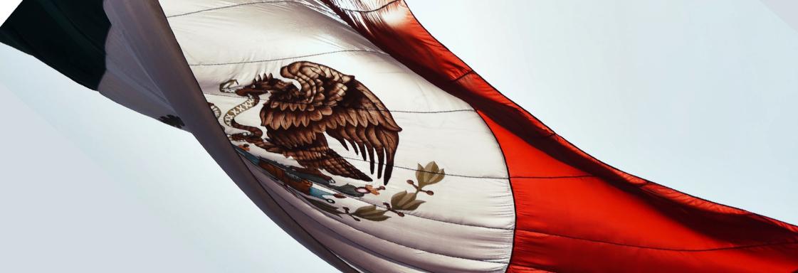 Fotografía de la bandera nacional ondeando. Foto por Luis Vidal para Unsplash.